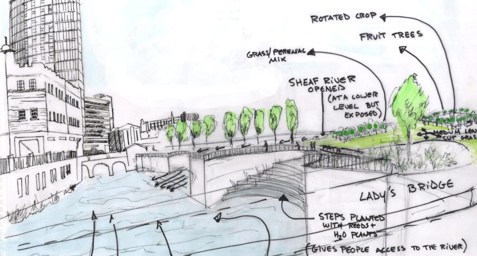 Sheffield's Riverside Business Park – Conceptual Design